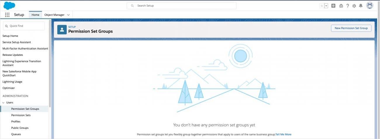 TaskRay Permission Set Groups (screen shot)